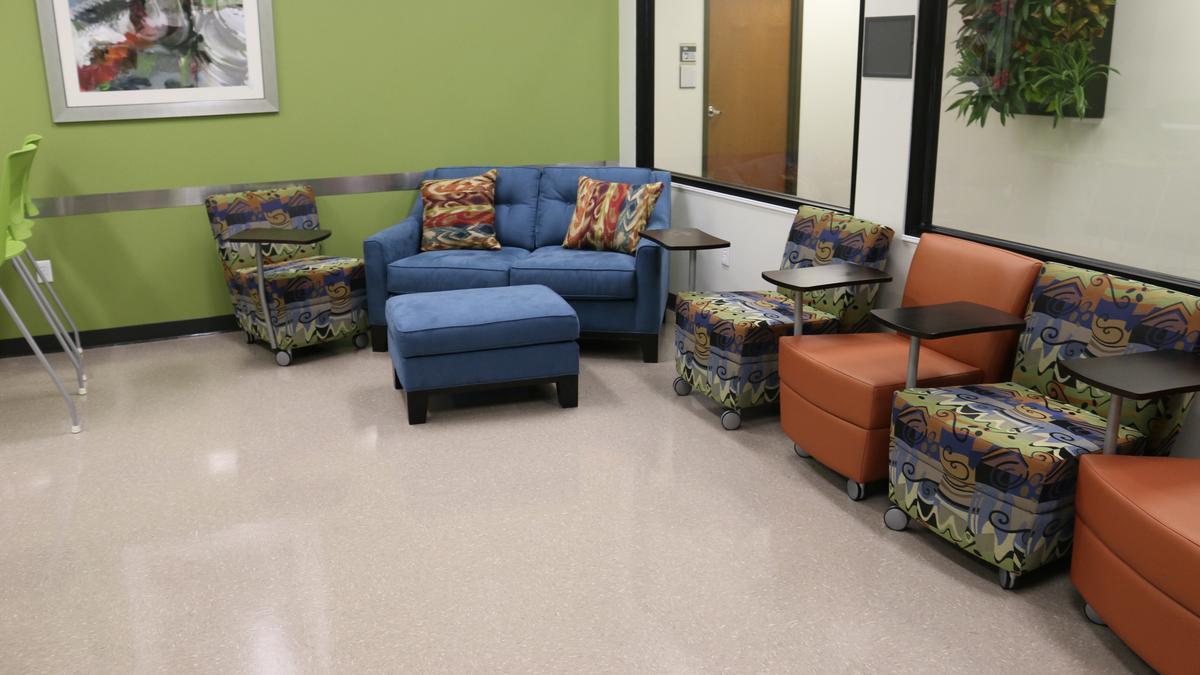 UCF incubator image.jpg